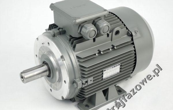 Silnik elektryczny 3 kW 1000 obr/min IE2 GAMAK AGM2EL 132 S 6
