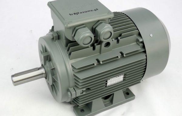 Silnik elektryczny 11 kW 1000 obr/min IE2 GAMAK AGM2E 160 L 6