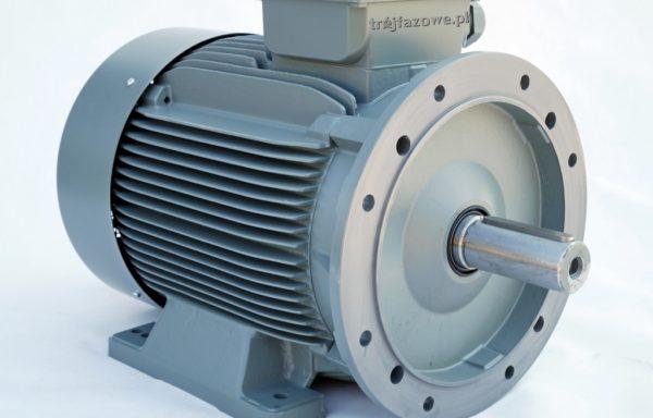 Silnik elektryczny 55 kW 1500 obr/min IE2 GAMAK GM2E 250 M 4